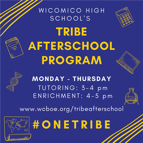 Tribe after school